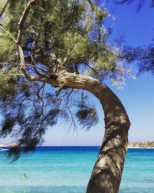 Palm Beach Paros