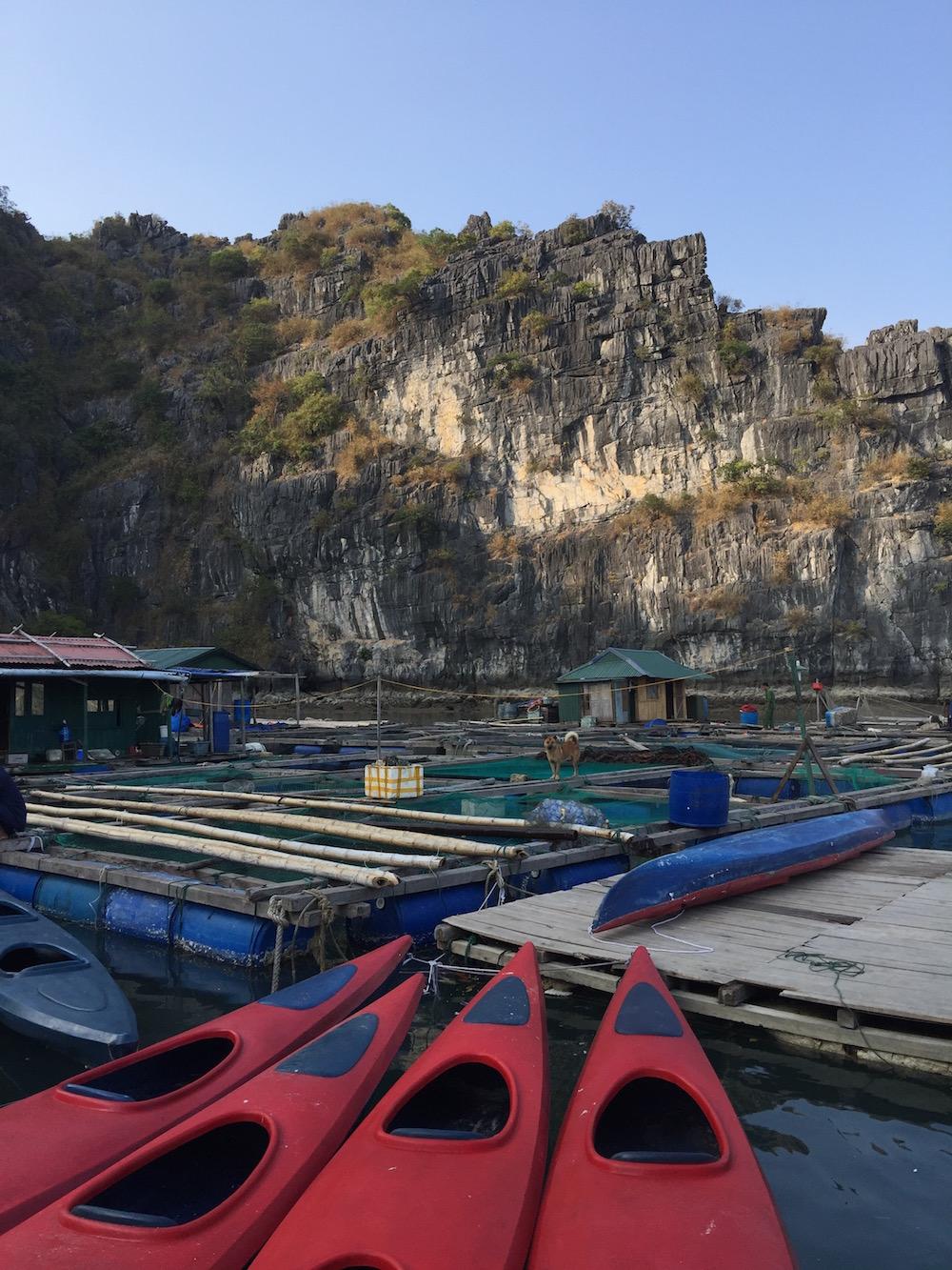 Kayak dans la baie d'Halong Vietnam