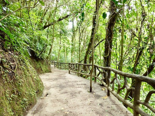 Mystico hanging bridge Arenal
